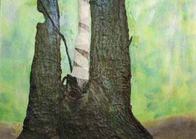 flaherty-disabledtree02 (1)